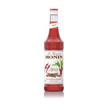 SIROP MONIN SPICY 70 cl
